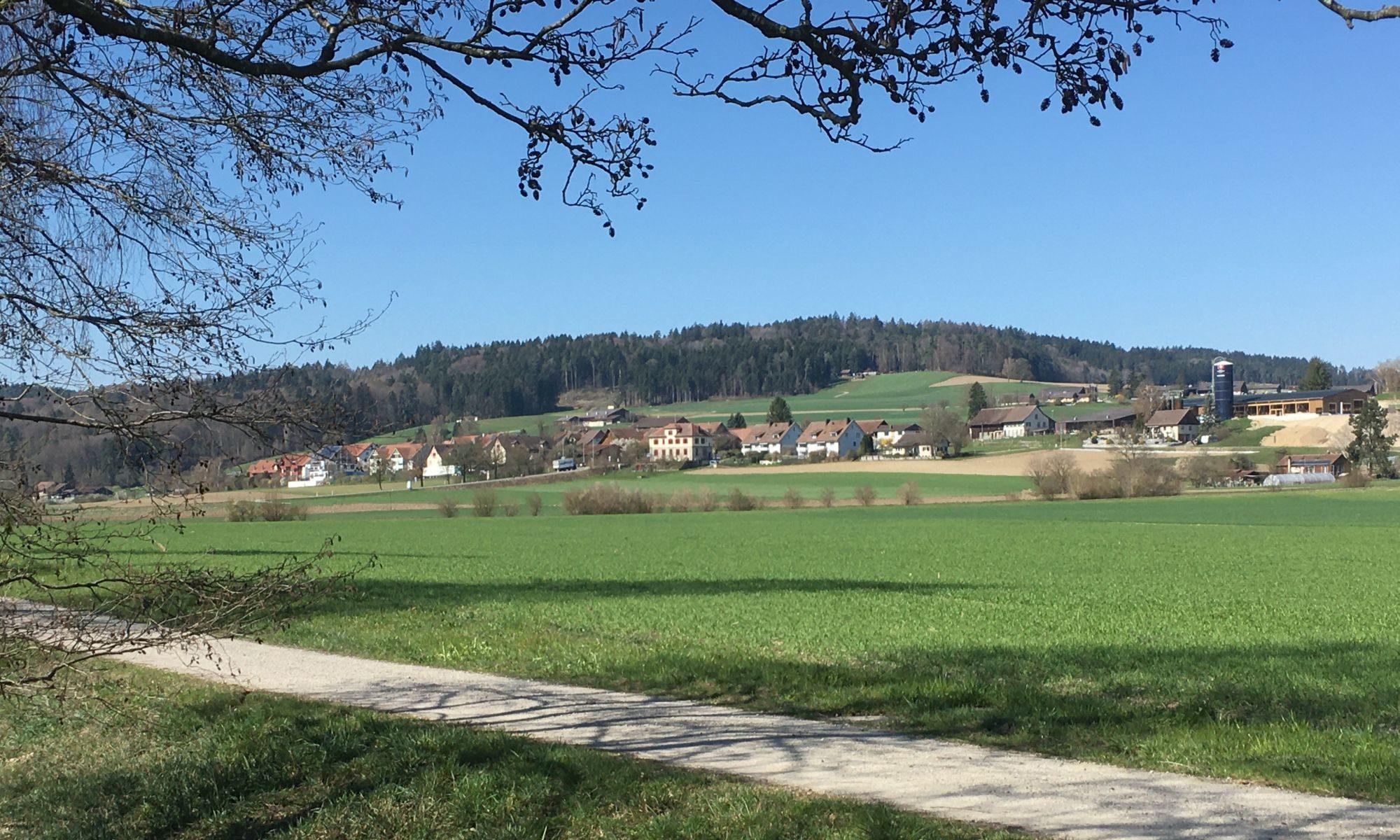 Dorfverein Aesch